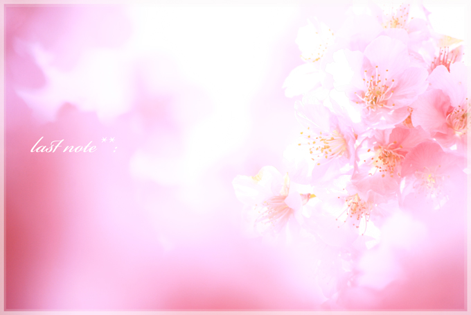 IMG_8133.jpg