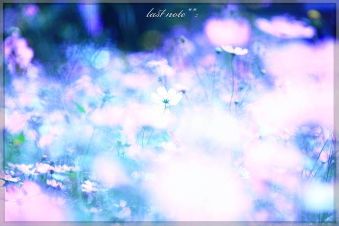 IMG_9986.jpg